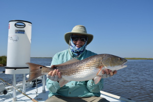 anderson louisiana redfish on fly