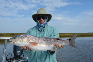 redfish fly fishing louisiana