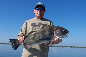 brown black drum