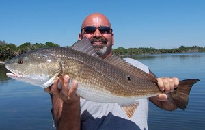 carroll redfish