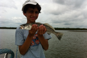 edgewater speckled trout