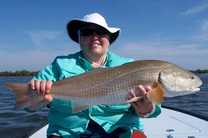 gray redfish