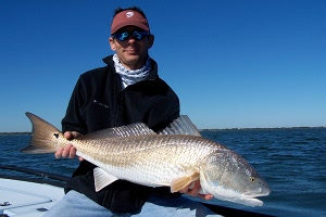green redfish