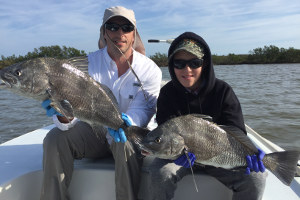 black drum fishing indian river