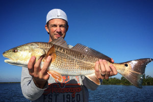 catching red drum on flats mosquito lagoon