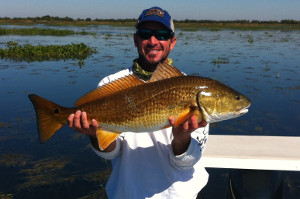 redfish caught fishing houma louisiana