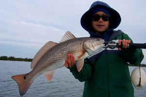 lemmon redfish