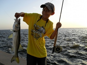 lemmon snook on fly
