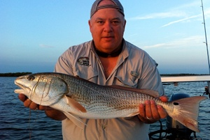 oak hill red drum
