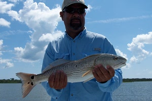 oliveras redfish