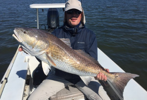bull redfish mosquito lagoon may