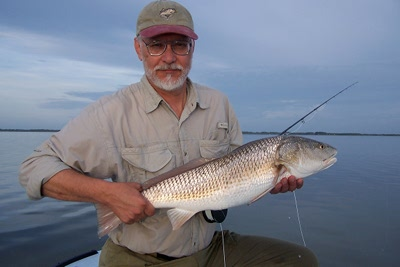 pupedis redfish on fly