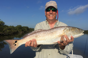 redfish from mosquito lagoon trip