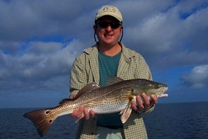 sharp redfish