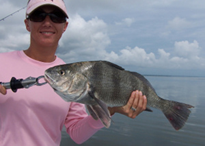 shawna black drum