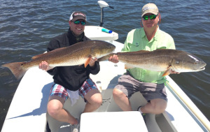 indian river lagoon redfish charter