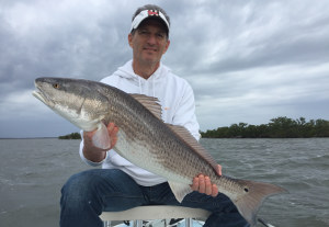 big redfish in mosquito lagoon