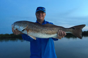 redfish charter in mosquito lagoon