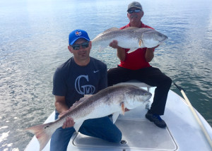 fall bull reds at ponce inlet fl