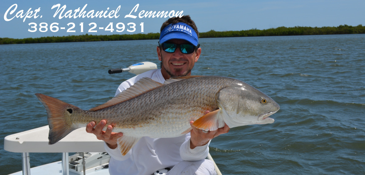 indian river lagoon redfish fishing