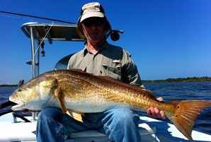 browne redfish on fly
