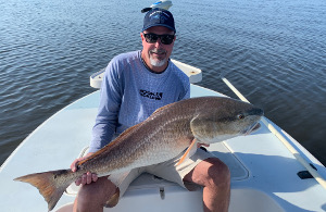 indian river bull redfish