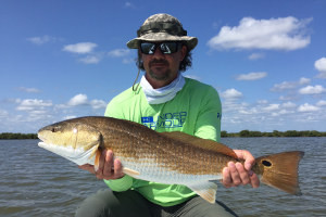 fishing for red drum mosquito lagoon