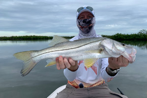 nsb florida snook fishing