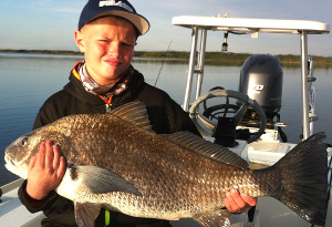 indian river black drum
