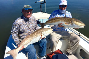 big redfish double from mosquito lagoon