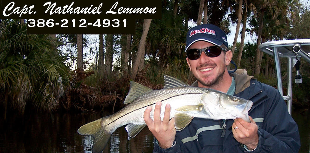 fishing for snook around new smyrna beach area