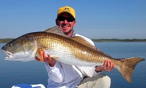redfish caught in mosquito lagoon
